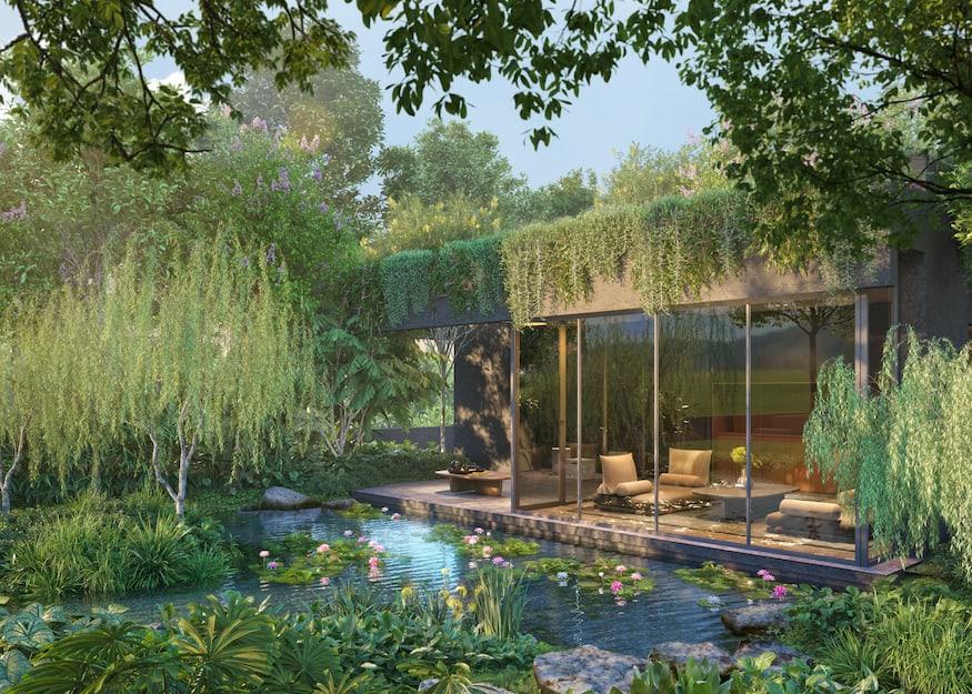 Midtown Modern facilities lily pond